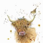 730-highland-cattle-with-bird-nest