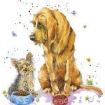 732-bloodhound