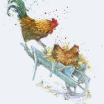 774-wheelbarrow-with-chickens