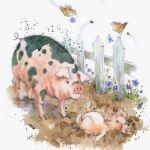 794-pig-piglet