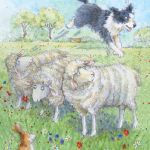 829-sheep-dog-rabbit-jpg