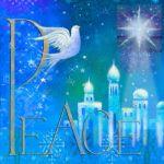 905-Dove-on-blue-peace-