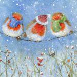 686-3-robins-snail-