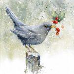 739-blackbird