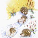 755-hedgehogs
