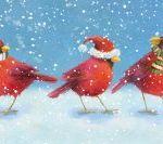 835-cardinals