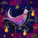 845partridge-night-sky