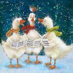 859-3-geese-robin
