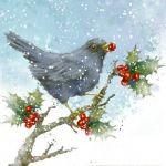 866-blackbird-berry-in-beak