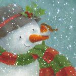 856-snowman-robin-nose