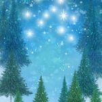 812-tree-stars